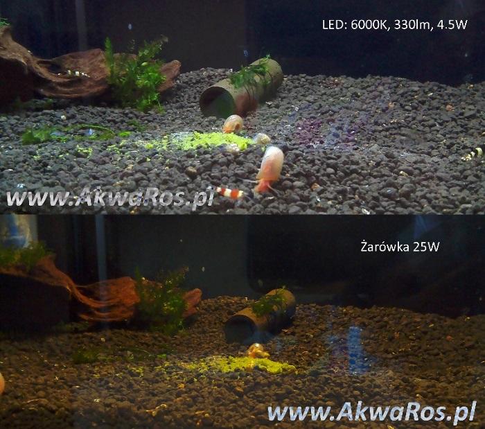 Pokrywa Akwarium Profilowanego 40x25x30